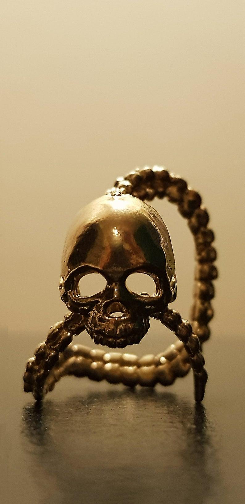 anillo cráneo y espina dorsal